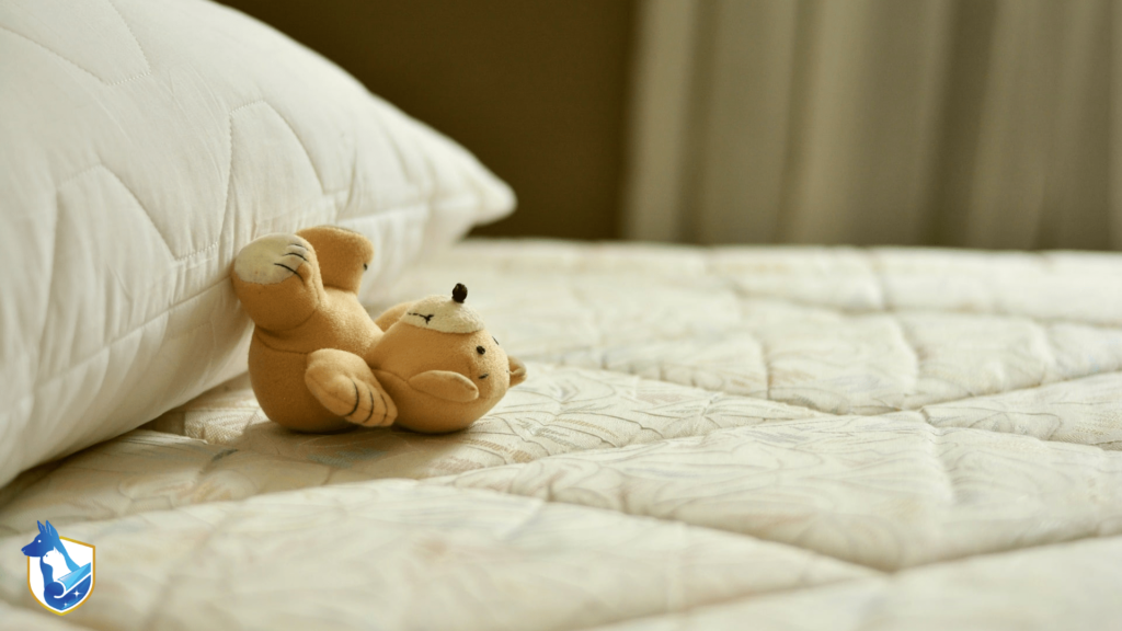 upholstery cleaning mattress with teddy bear
